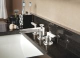 Rincon Bay faucet in Burnished Nickel