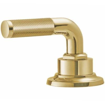 Lifetime Polished Gold PVD Handle