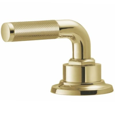 Polished Brass Uncoated Handle